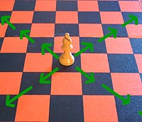 the move of the chess bishop