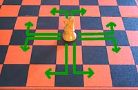 the move of the chess knight (known by beginners as the horse)